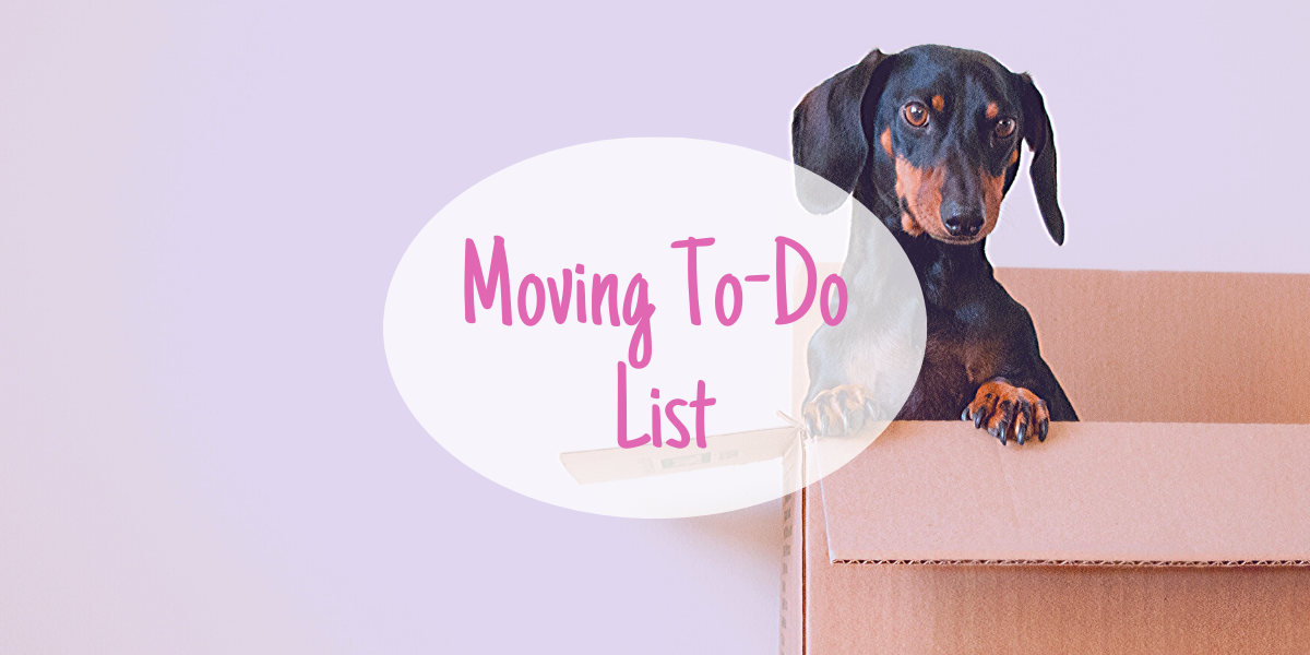Read more about the article Moving To-Do List: what you need to do in addition to packing